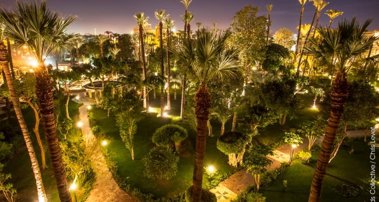 Les jardins du Winter Palace