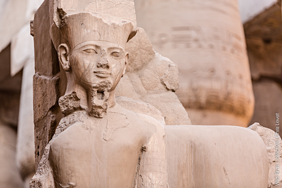 Complexe de Karnak Egypte