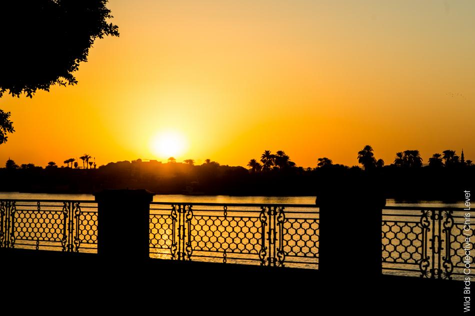 Coucher de soleil Louxor Egypte