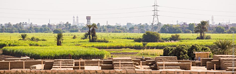 Rive ouest du Nil
