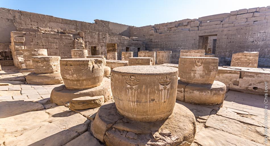 Temple de Ramsès III Egypte