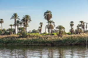 Croisière sur le Nil : Louxor Edfou