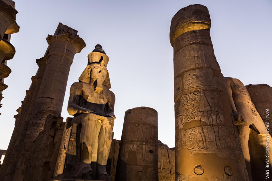 Temple de Louxor Egypte