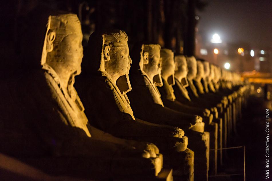 Allée des sphinx Louxor Egypte