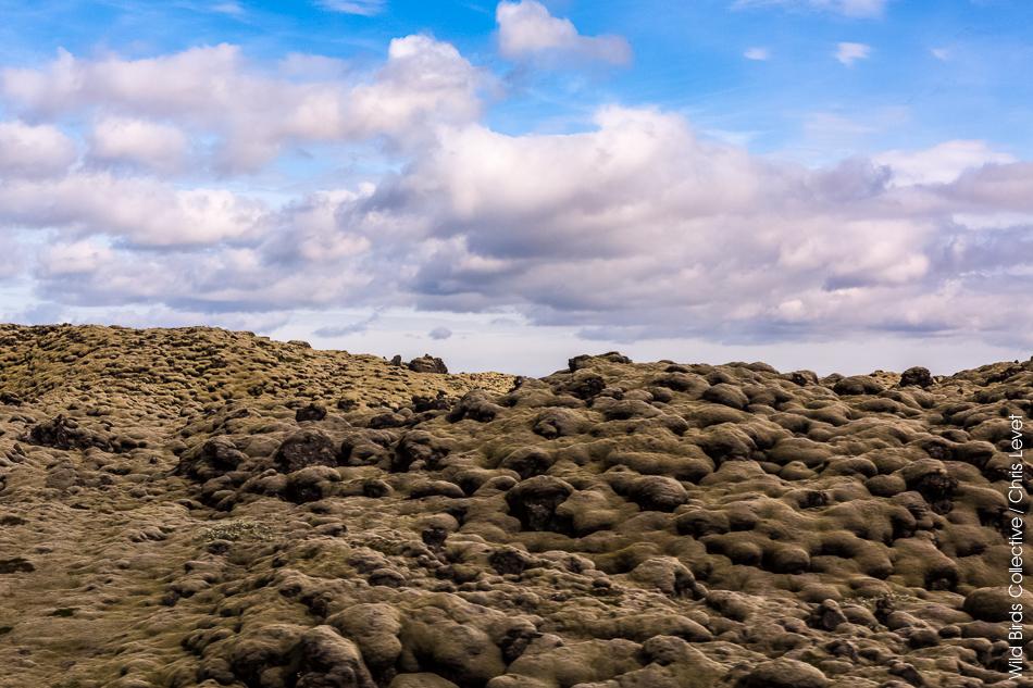 Mýrdalssandur Islande