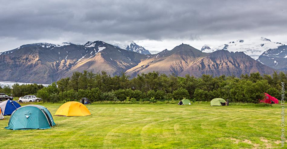 Camping Skaftafell Islande