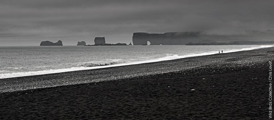 arche de Dyrhólaey Vik Islande