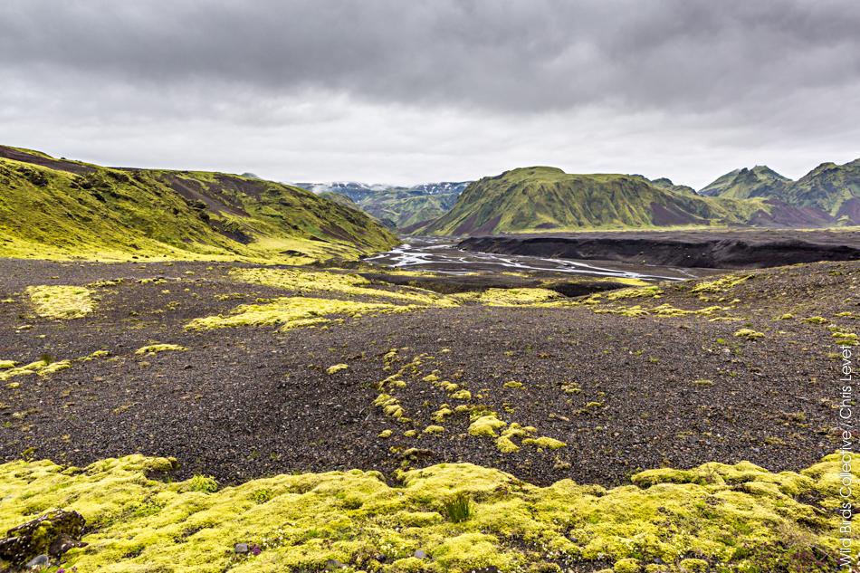 Thakgil Islande