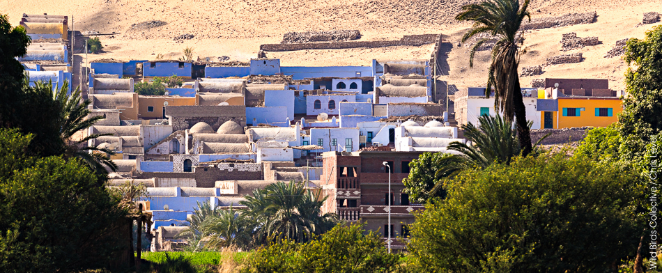 Village Nubien Egypte