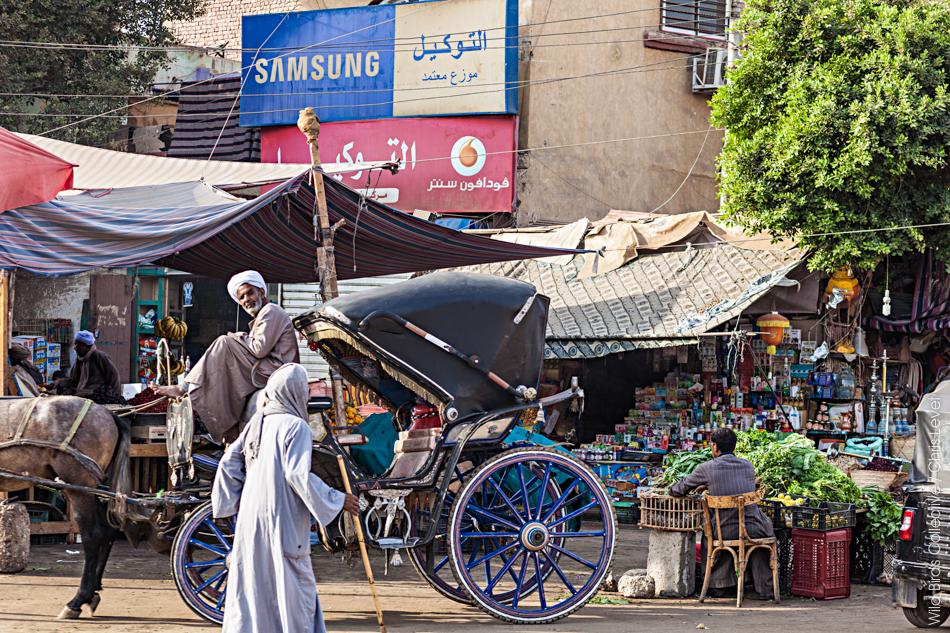 Egypte Edfou