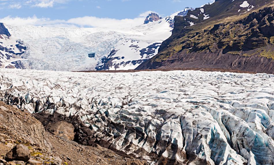 Islande Svinafellsjokull