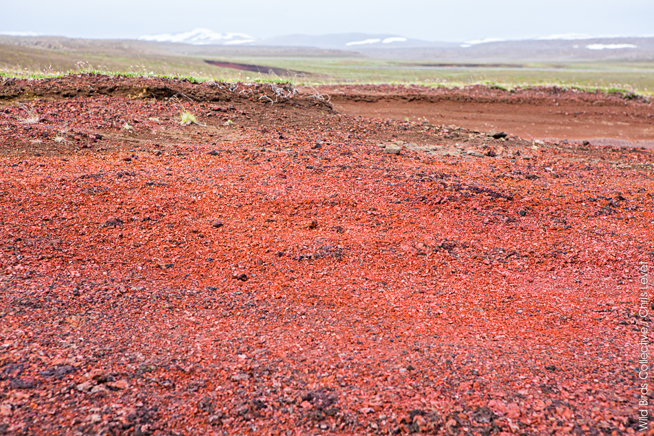 Islande Raudholar