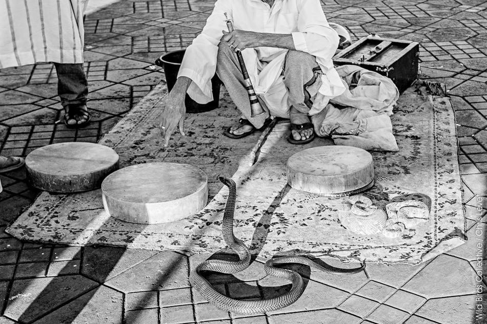 place Jemaa el-Fna de Marrakech