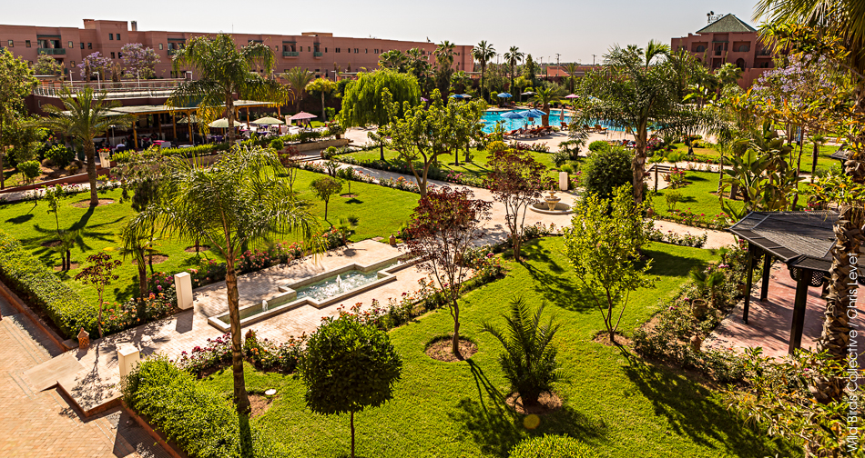 Visiter marrakech wild birds collective for Jardin a visiter