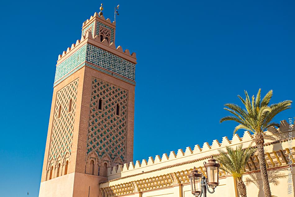 la Mosquée d'El mansour