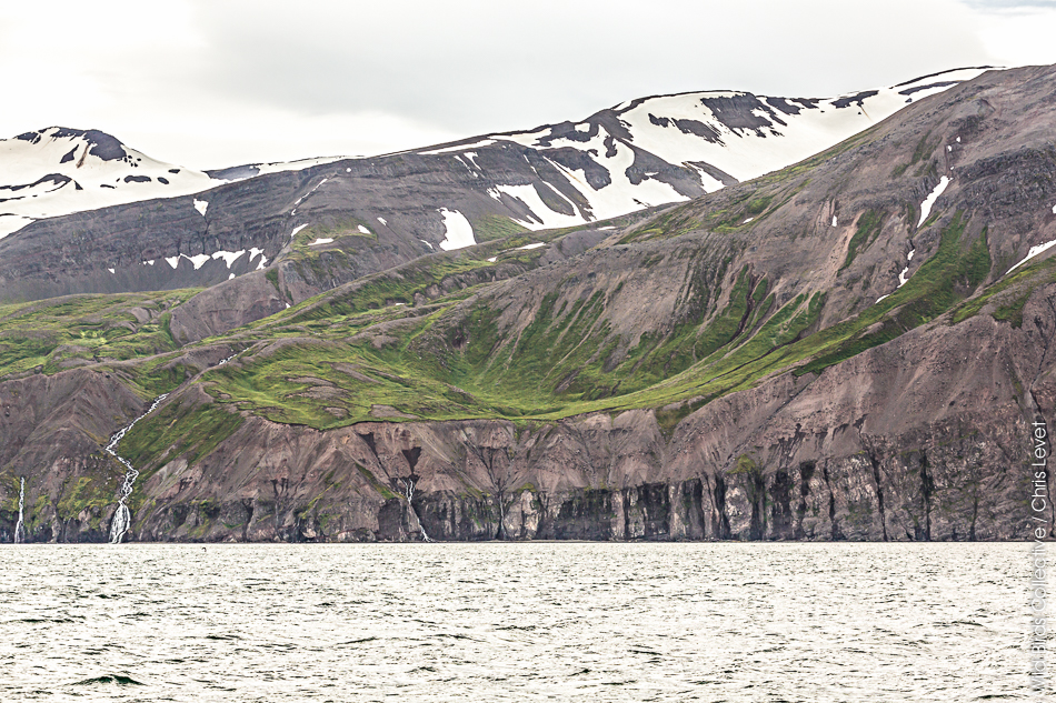 Husavik Islande baleine