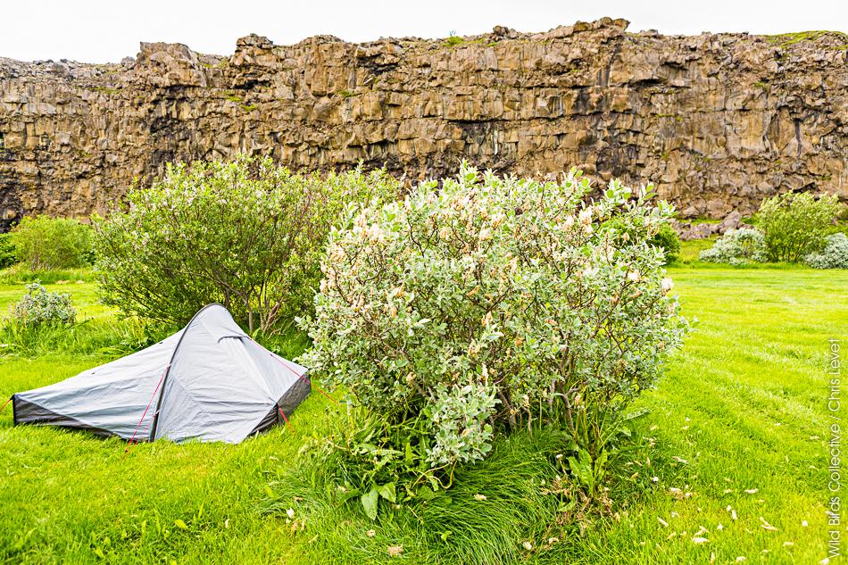 Asbyrgi Islande