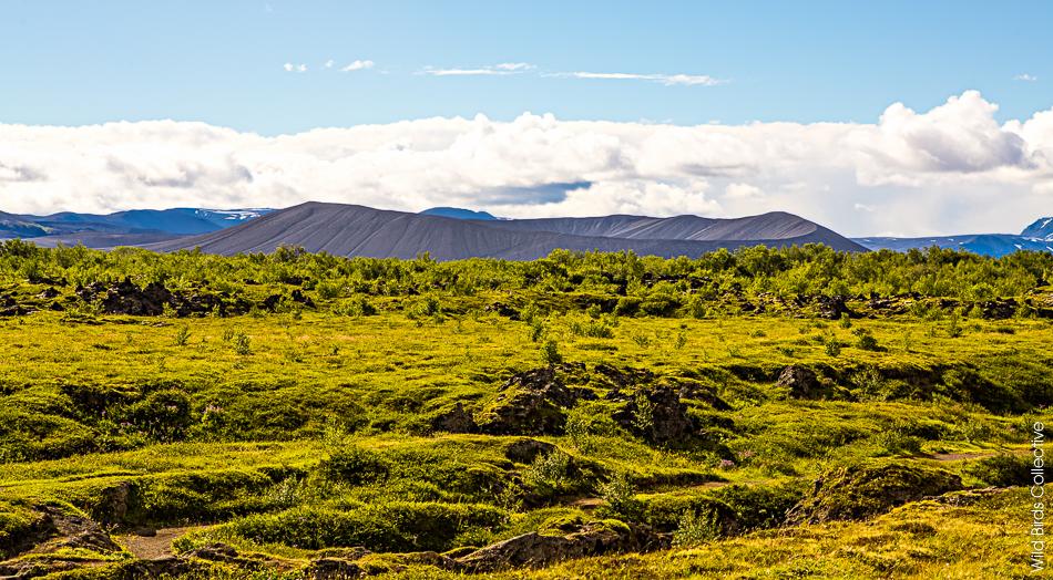 Islande Myvatn Hverfjall