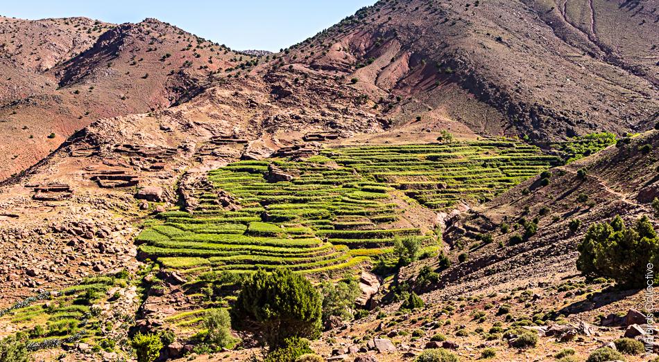 Toubkal Maroc