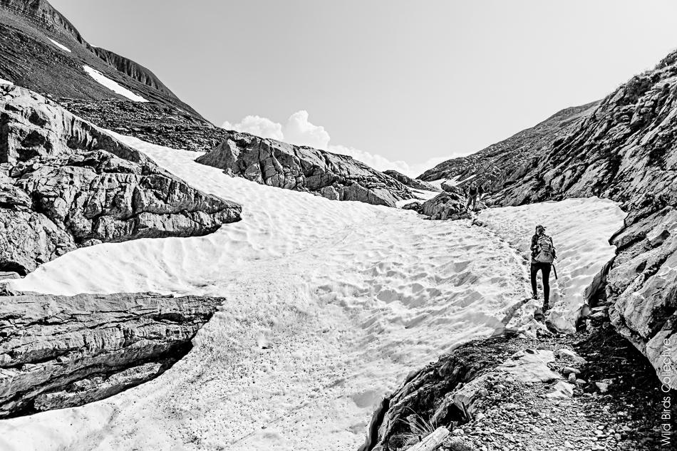 Cabane Weber Jungfrau