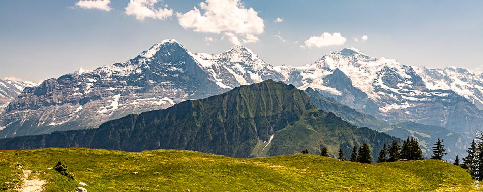 Jungfrau region
