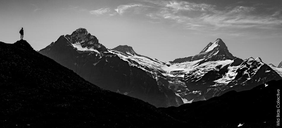 Schreckhorn Wetterhorn Suisse