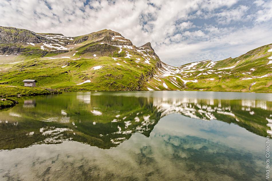 Lac Bachalp Suisse