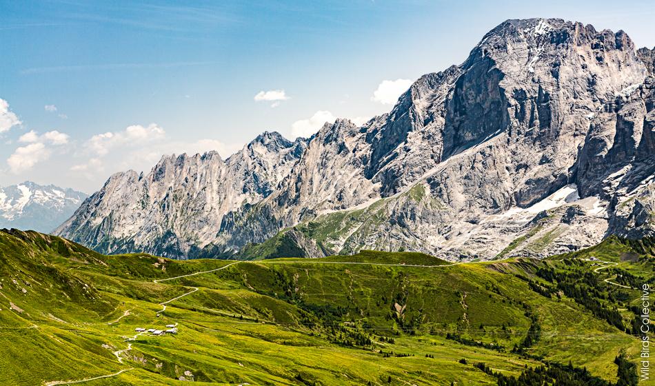 Grosse Scheidegg Suisse
