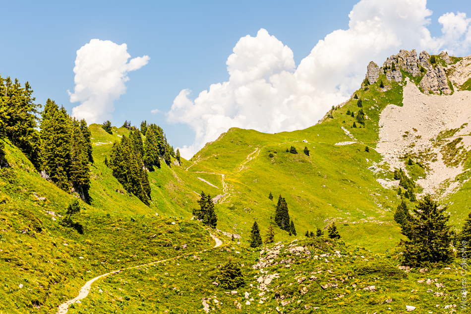 Trek Suisse Jungfrau