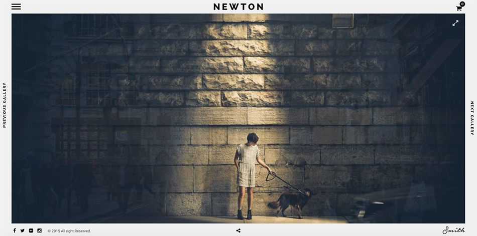 Template-Wordpress-Newton