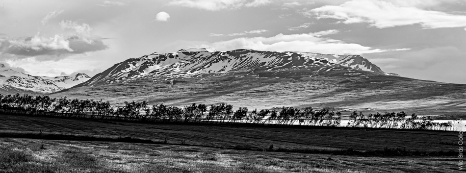 Montagnes Islande
