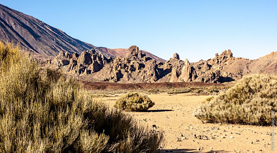 Los Roques de Garcia, Teide, Tenerife