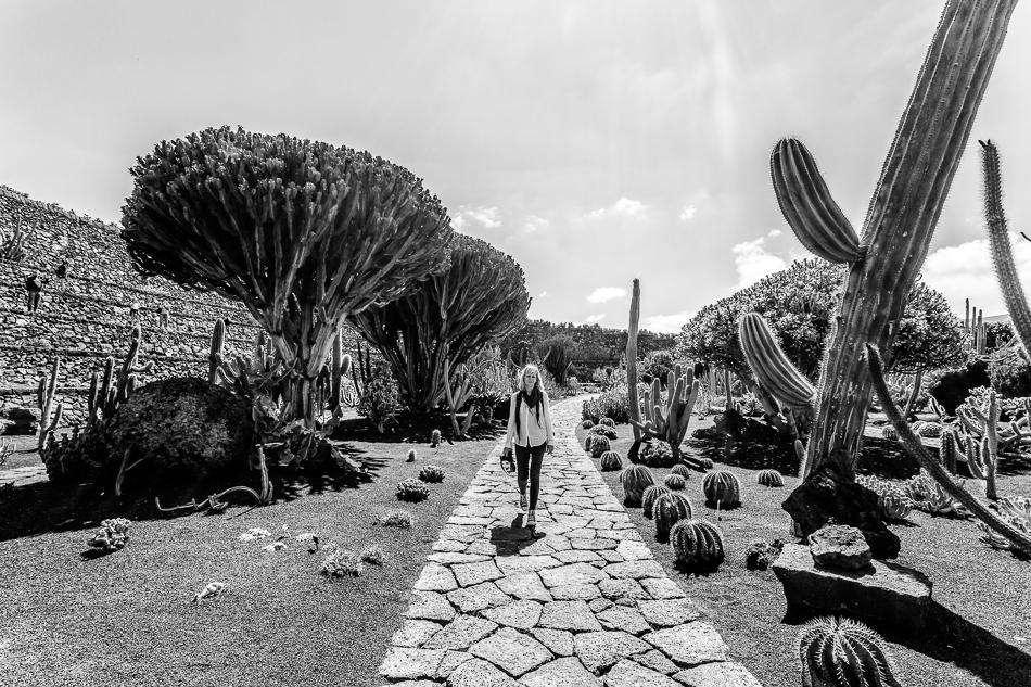 Jardin des cactus de Lanzarote